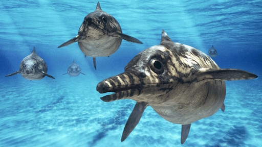 Illustration of ichthyosaurs